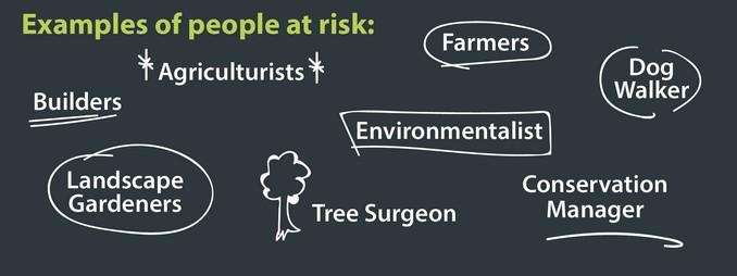 Example of people at risk include Environmentalist, Farmers, Agriculturists, Estate maintenance, Landscape gardeners, Builders, Tree surgeons, Conservation manager, Dog walker.