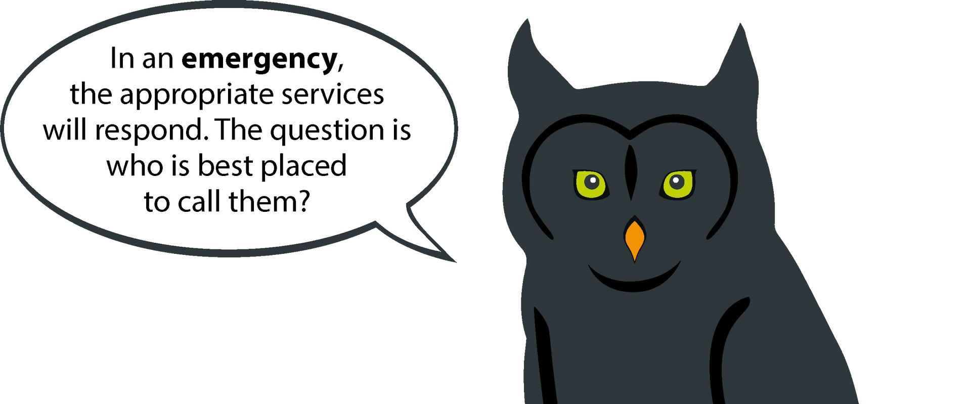 Lone worker protection - Emergency services owl facts