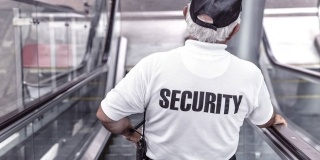 The Professional Security Officer
